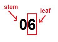 stem and leaf 2
